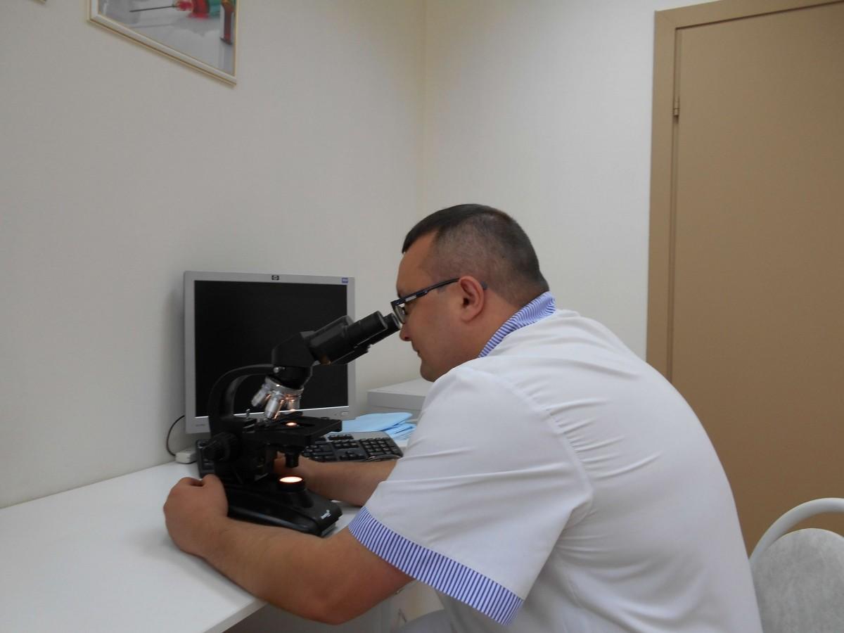 врач смотрит в микроскоп на гонококк