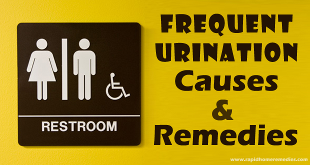 Frequent Urination in Men and Women: Causes & Treatments